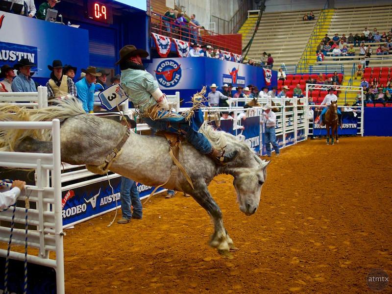 Bucking Bronco 7, Rodeo Austin - Austin, Texas