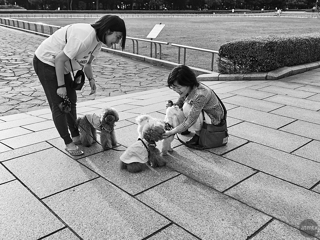 Everyday Life, Peace Memorial Park - Hiroshima, Japan