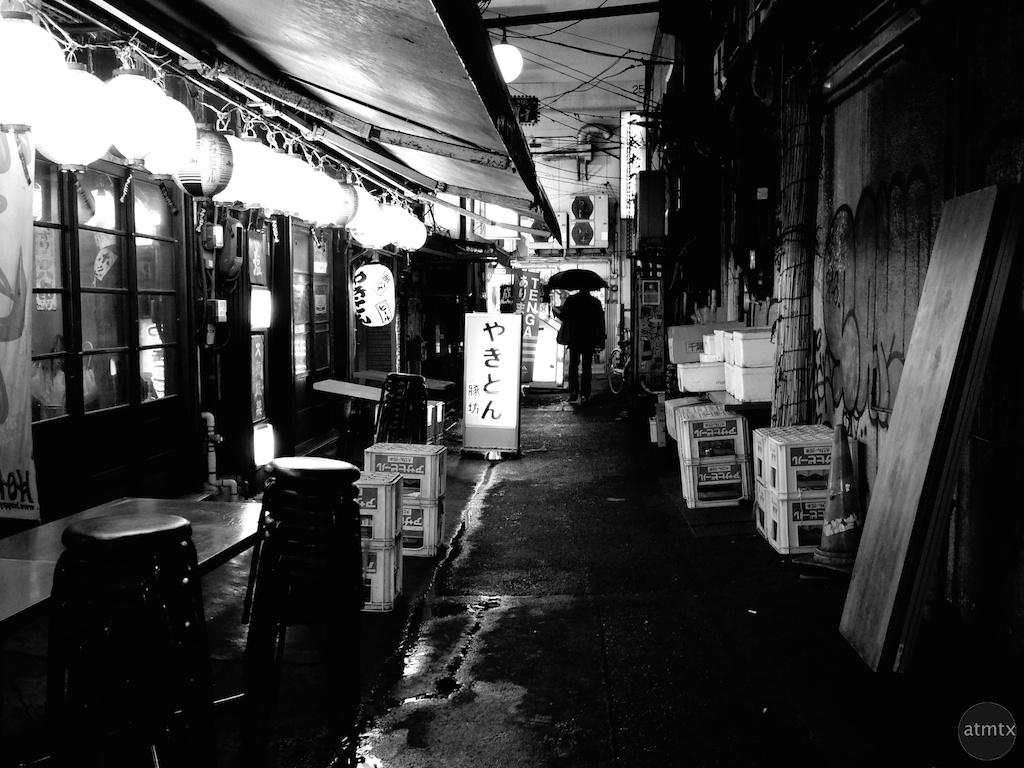 Alleyway in Ueno - Tokyo, Japan