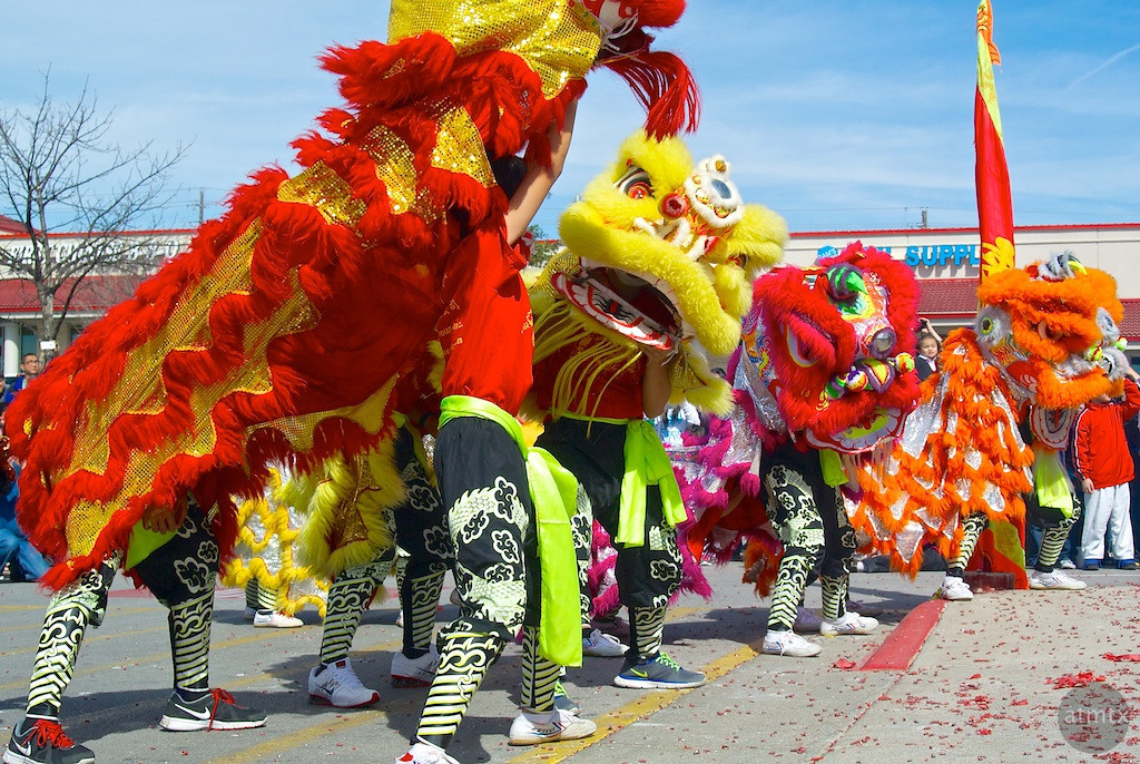 Lion Dance #6, 2014 Chinese New Year Celebration - Austin, Texas
