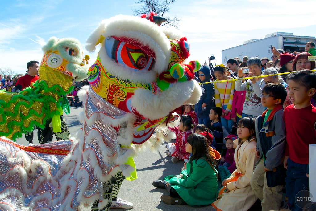 Lions Meet the Crowd, 2014 Chinese New Year Celebration - Austin, Texas