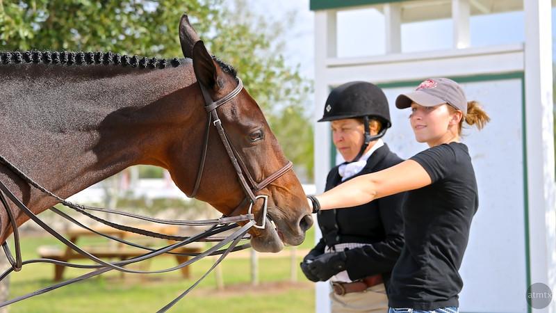 Scene #22,  Great Southwest Equestrian Center - Katy, Texas