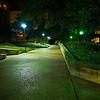 Green Glow, University of Texas - Austin, Texas