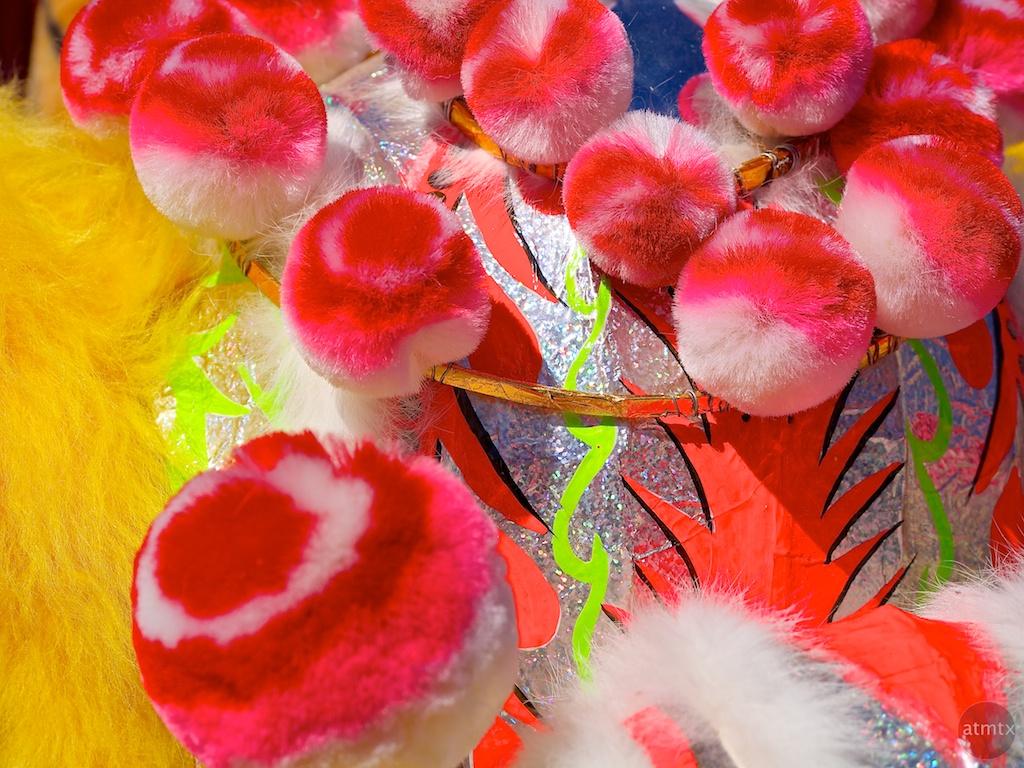 Lion's Fur, 2013 Chinese New Year Celebration - Austin, Texas