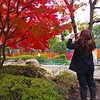 A Neighborhood Park #4 - Tokyo, Japan