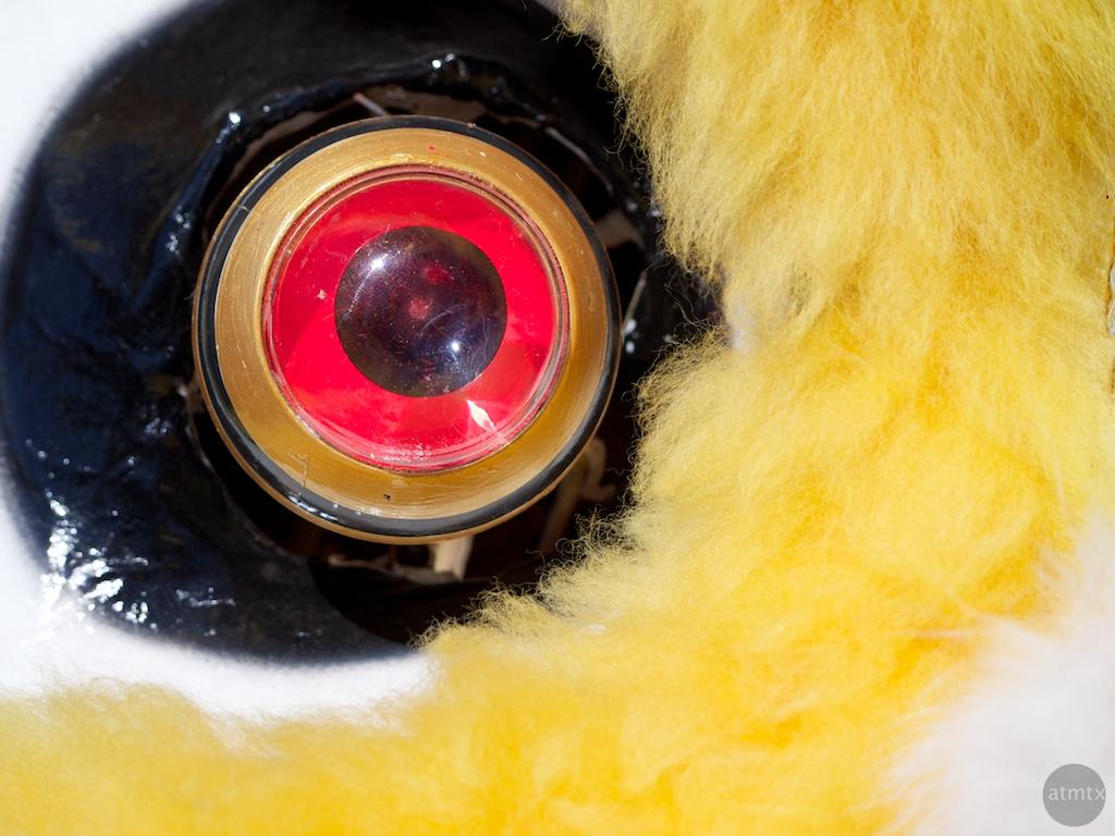 Lion's Eye, 2013 Chinese New Year Celebration - Austin, Texas