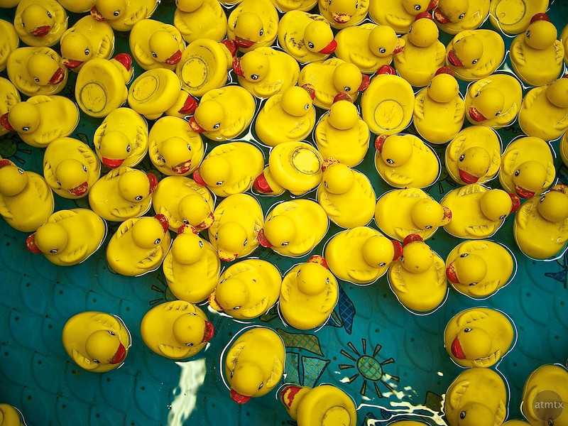 Duck Swarm, Parking Lot Carnival - Round Rock, Texas