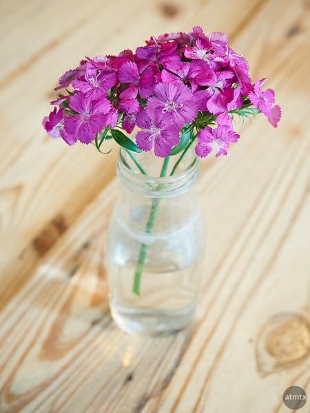 Cafe Flower - San Antonio, Texas