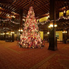 Christmas Tree, Hotel del Coronado - Coronado, California
