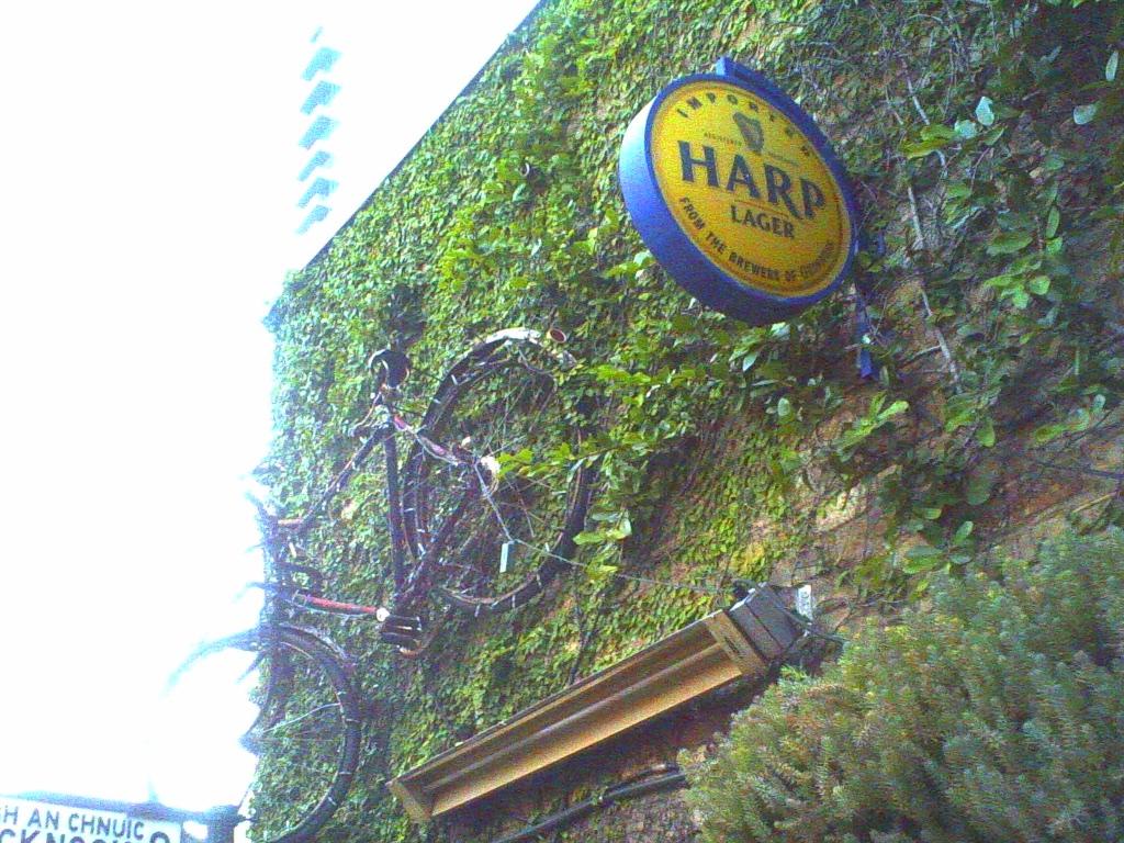 Lofi Harp - Austin, Texas