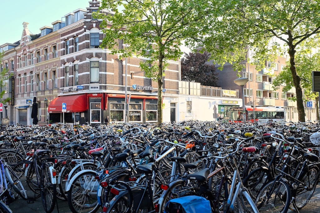 Biking Downtown - Amsterdam, Netherlands