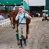 Scene #30,  Great Southwest Equestrian Center - Katy, Texas