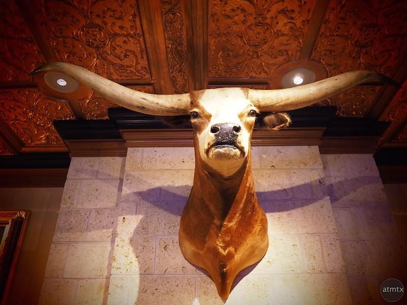 Longhorn, Driskill Hotel - Austin, Texas