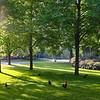 Morning in Park Valkenberg - Breda, Netherlands