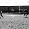 Scene #2,  Great Southwest Equestrian Center - Katy, Texas