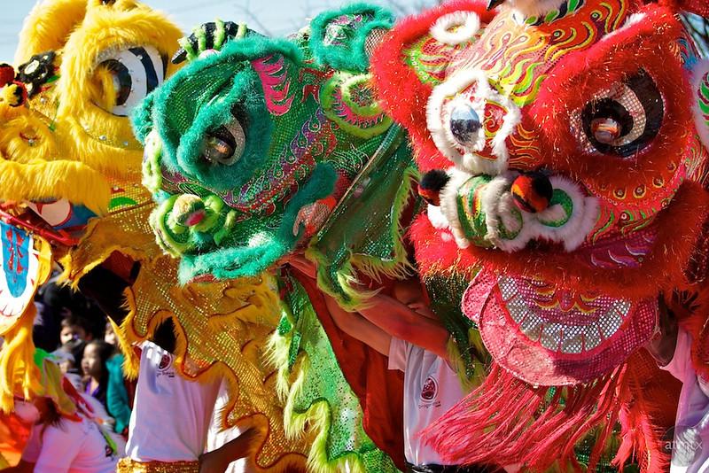 Lion Dance, 2012 Chinese New Year Celebration - Austin, Texas