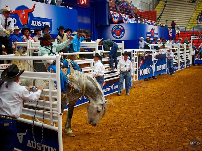 Bucking Bronco 3, Rodeo Austin - Austin, Texas