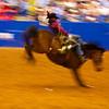 Bucking and Blur #2, Rodeo Austin - Austin, Texas
