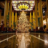 2011 Driskill Christmas Tree - Austin, Texas