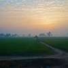 Indian Countryside #4, Shatabdi Express Train - Between Delhi and Agra, India