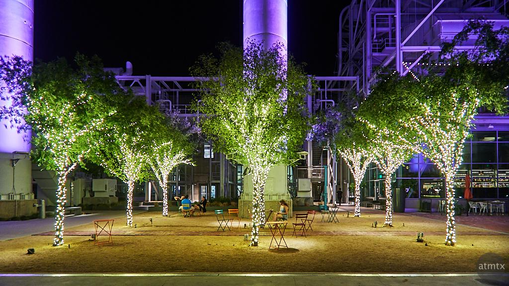 Festive Grove, Seaholm - Austin, Texas