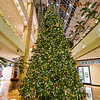 Christmas Tree, Shops at Canal Street - New Orleans, Louisiana