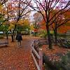 A Neighborhood Park #1 - Yokohama, Japan