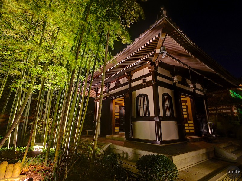Bamboo and Temple, Hasedera - Kamakura, Japan