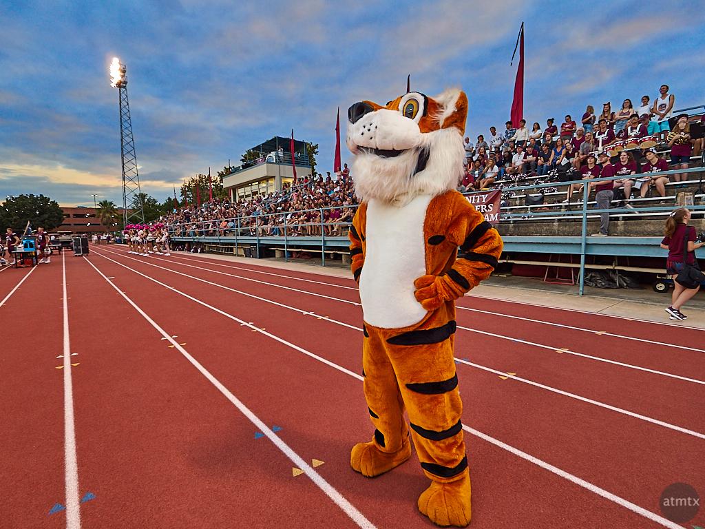 LeeRoy the Tiger, Trinity University - San Antonio, Texas
