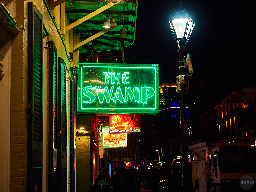 Neon, The Swamp - New Orleans, Louisiana
