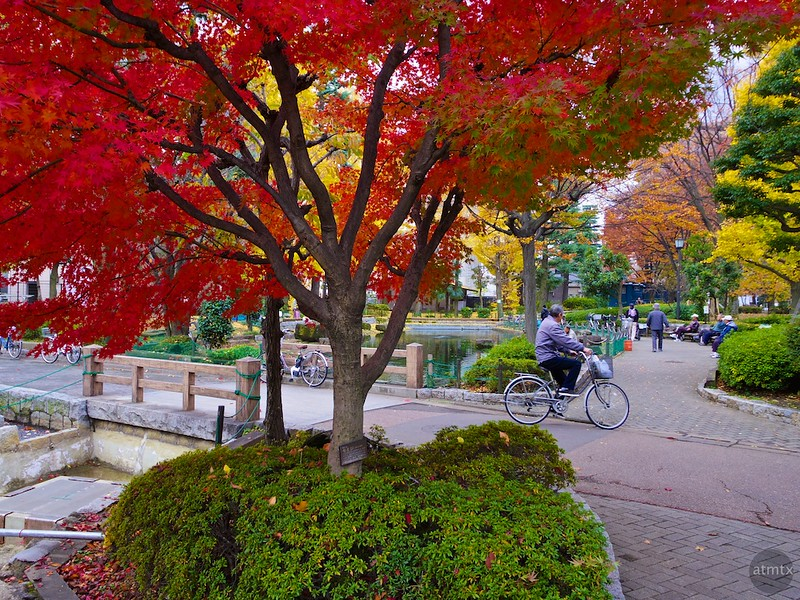 A Neighborhood Park #5 - Tokyo, Japan