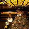 2011 Driskill Christmas Tree and Glass Dome- Austin, Texas