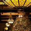 2011 Driskill Christmas Tree and Glass Dome- Austin, Texas