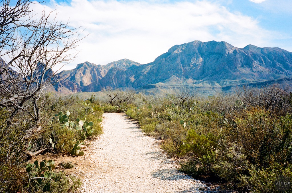 Path, Sam Nail Ranch - Big Bend National Park, Texas