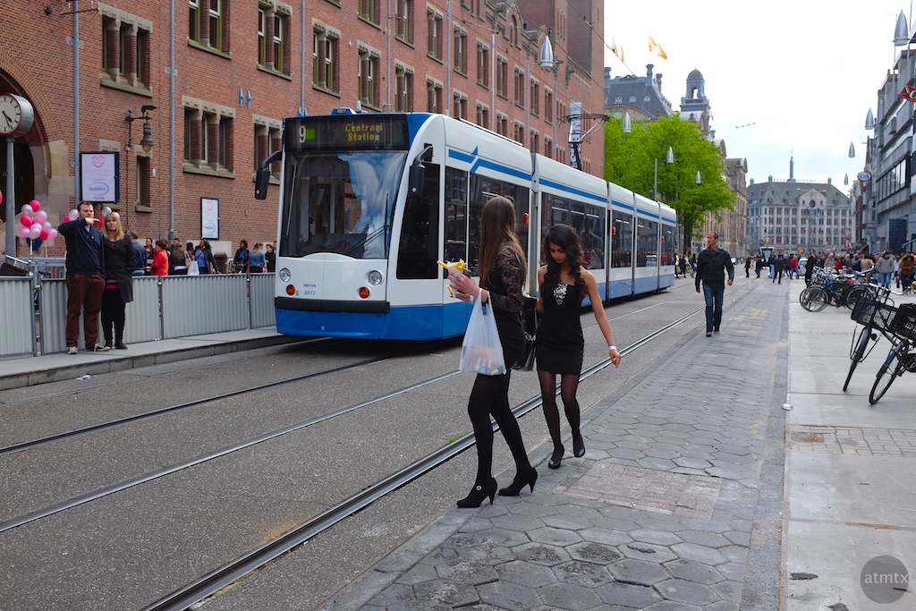The Trams of Amsterdam #2 - Amsterdam, Netherlands