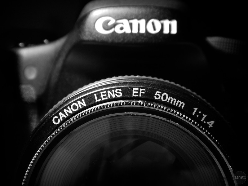 Canon 7D with 50mm f1.4