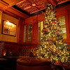 Cozy and Festive Corner, Driskill Bar - Austin, Texas