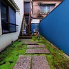Blue Walls with Green Floor - Tokyo, Japan