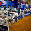Bucking Bronco 2, Rodeo Austin - Austin, Texas