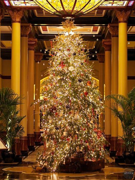 2011 Driskill Christmas Tree Portrait - Austin, Texas