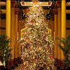 2011 Driskill Christmas Tree Portrait - Austin, Texas