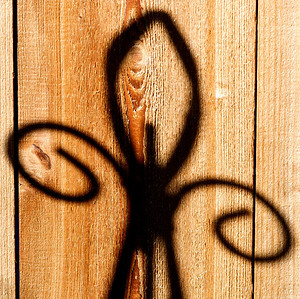 031|When The Saints Go Marching In [A Fleur-de-lis shadow on my garden shed]