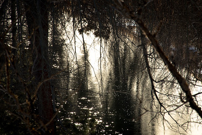 Blackfoot River Reflection