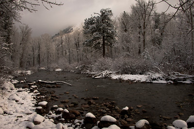 Rattlesnake Creek in December