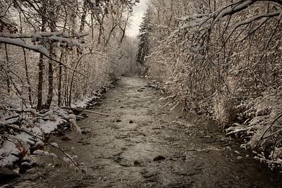Winter at Rattlesnake Creek