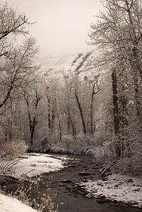 Rattlesnake Creek in December