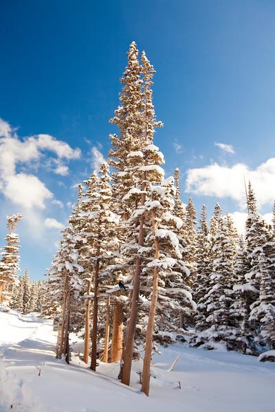 Dream Lake Hike <br /> Rocky Mountain National Park