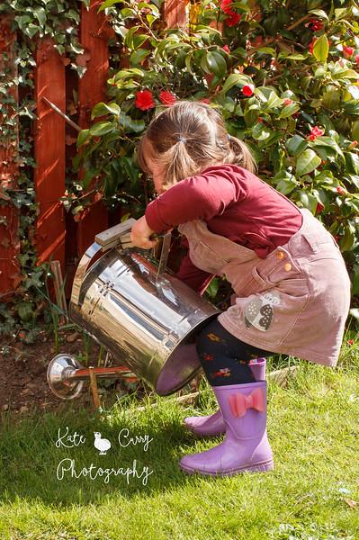 Preschool girl in pigtails, watering the garden, Musselburgh.