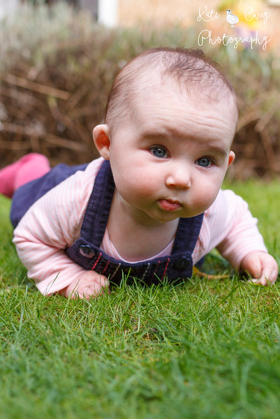 Baby girl on tummy on lawn, dribbling, Musselburgh.