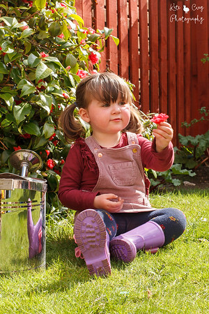 Preschool girl in pigtails, with a flower, in the garden, Musselburgh.